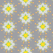 gray white star flower yellow