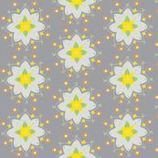 gray white star flower yellow