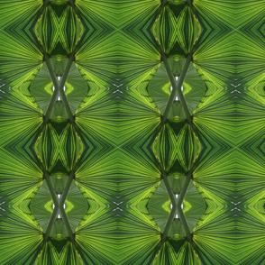 Green Palms_6583