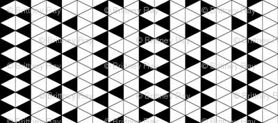 Triangle Check
