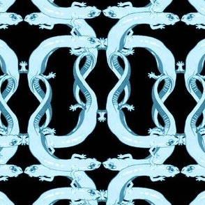 Knotted Salamander