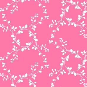 maypole carnation #fe79a8