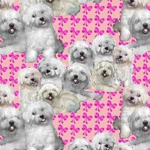 bolognese_dog_fabric