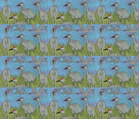 Rsandhill_cranes_shop_preview