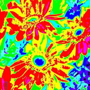 bright daisies