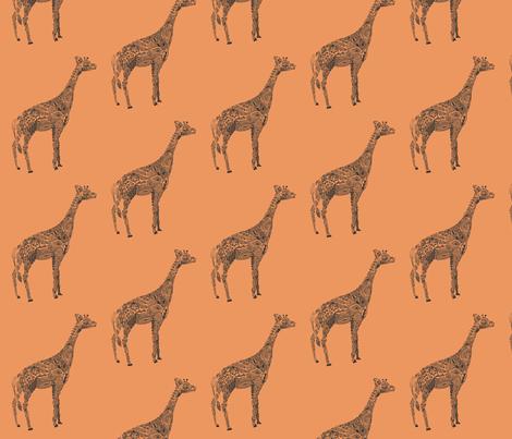 Giraffe Color fabric by kanikamathur on Spoonflower - custom fabric