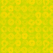 Backlit_Citrus