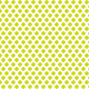 Clover in Lime