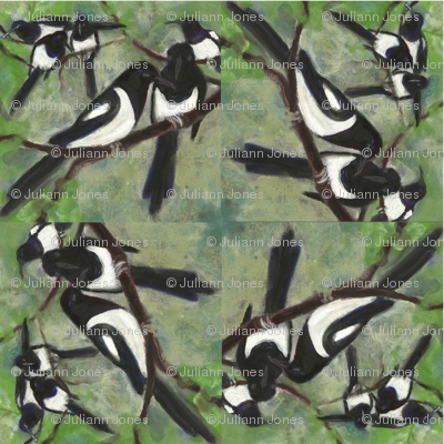 magpies spiral