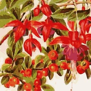Fuchsia Fantasia