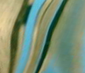 Rmirageovalswirl_comment_206356_thumb