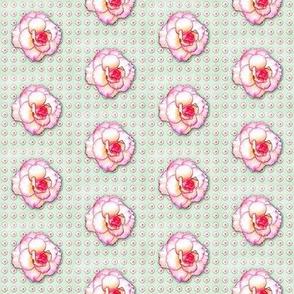 begonia-pattern