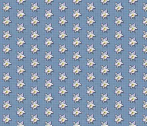 Rrrrrorchid_white-pattern_shop_preview