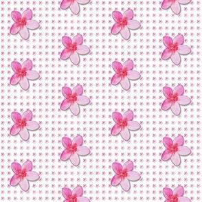 plumeria-pattern_
