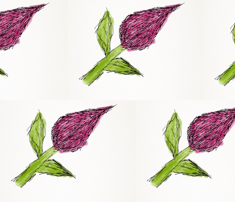 Hairy Rose fabric by daisyteacher on Spoonflower - custom fabric