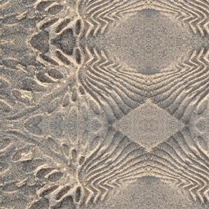 sandprint1
