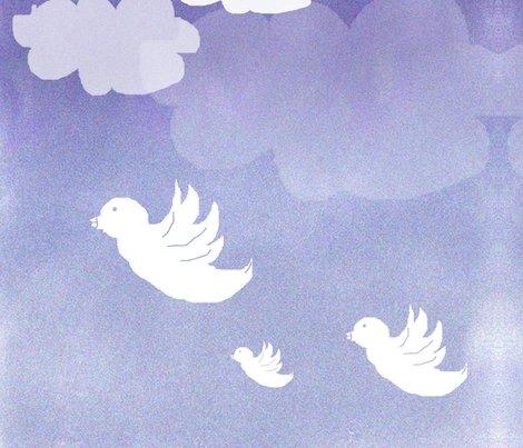 Rnuage_ciel_oiseaux_shop_preview