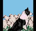 Rrrborder_collie_garden_flag_upload_comment_208213_thumb