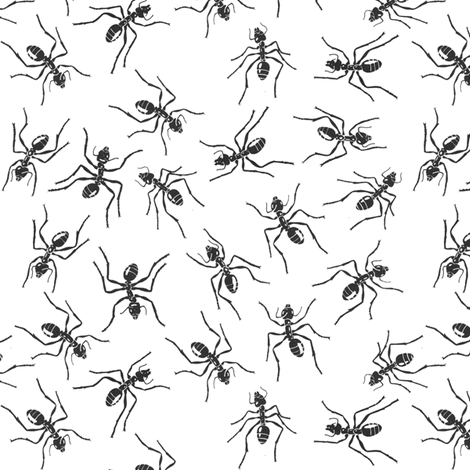 Ants! fabric by sufficiency on Spoonflower - custom fabric