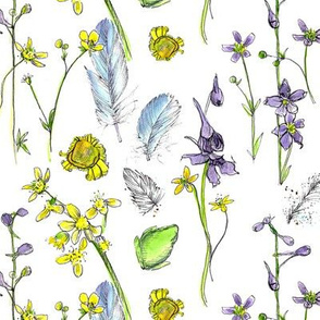 Wildflowers, Feathers, and a Frog