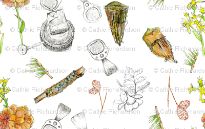 Lake Tahoe Campground Sketches