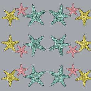 starfish gray background
