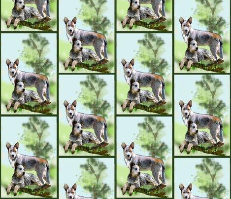 Rrrraustralian_cattle_dog__shop_preview
