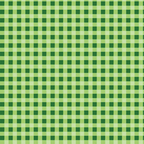 green gingham 3