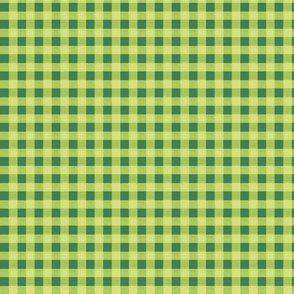 olive green gingham 2