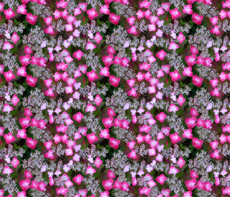 Lace_Hydrangea_light_watercolor_tif fabric by koalalady on Spoonflower - custom fabric