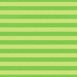 Christmas Holly Cupcake Green Stripes