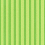 Christmas Holly Cupcake Green Stripes