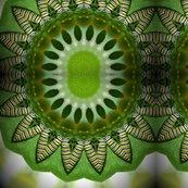 Rrrrcaterpillarkaleidoscope_1_shop_thumb