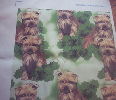 Rrrrnorfolk_terrier_seamless_pattern_comment_211660_thumb