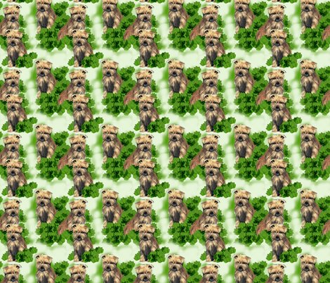 Rrrrnorfolk_terrier_seamless_pattern_shop_preview