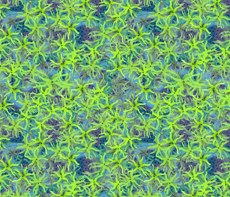 wild coral 2 fabric by glimmericks on Spoonflower - custom fabric