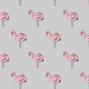 Rosa's Flamingo