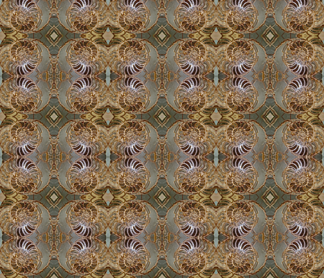 Fossil Spirals fabric by walkwithmagistudio on Spoonflower - custom fabric