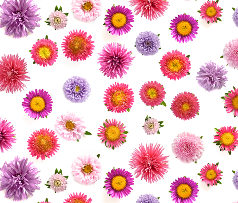 chrysanthemum ditsy fabric by ravynka on Spoonflower - custom fabric