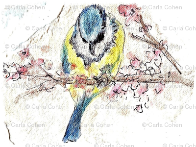 birdie_sparkle0001-ed