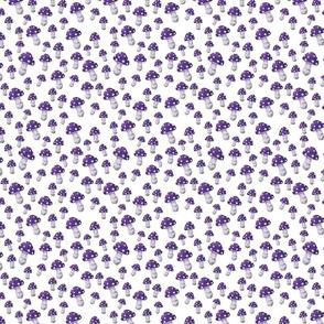 Mini MUSHROOM in Purple