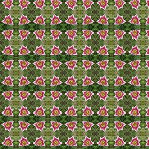 Sacred Geometry Tulip