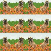 Rrrmastiffs_in_the_garden_fabric__shop_thumb