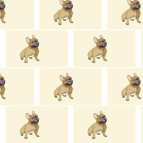Tan French Bulldog