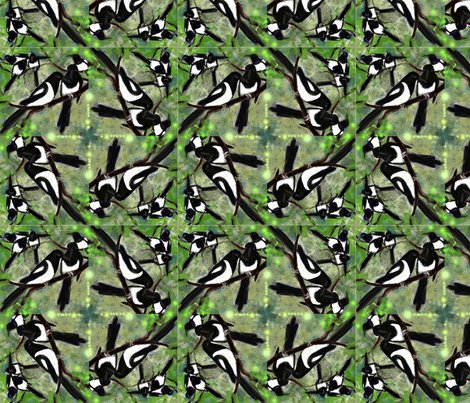 magpies spiral fabric by juliannjones on Spoonflower - custom fabric