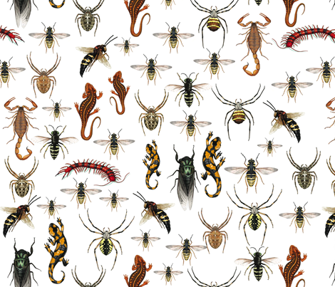 BugEyed fabric by nikky on Spoonflower - custom fabric