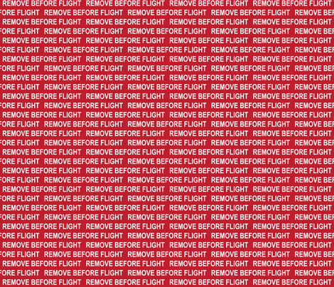 Remove Before Flight fabric by robyriker on Spoonflower - custom fabric