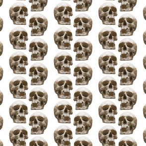 Large Skull Stripe