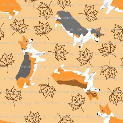 Ditzy seasons - fall Pembrokes