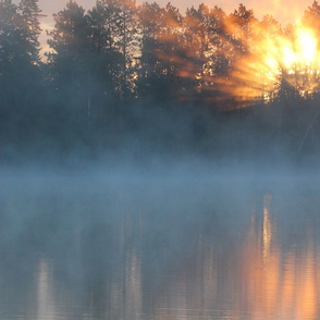 Loons, Sunrise and Lake